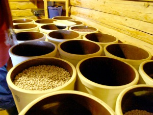 Barrels hold natural food stores at the therapeutic community of Ionia in Kasilof.