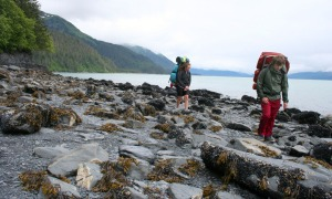 Photos by Clark Fair, Redoubt Reporter. Kelty and Olivia Fair pick their way through a field of boulders draped in seaweed and covered in barnacles and blue mussels. This is typical of the walking conditions between Tonsina Point and Derby Cove on a hike to Caines Head outside Seward.