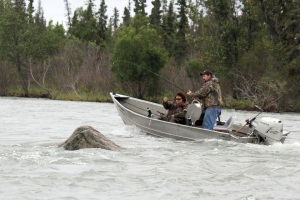 Photo by Patrice Kohl, Redoubt Reporter. Two fishermen fish for king salmon in a hole named Eagle Rock. The rock was mostly submerged in late July due to unusually high water levels in the Kenai River. No fishermen asked had ever seen an eagle sitting on the rock.