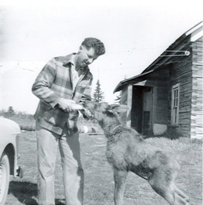 Photo courtesy of Peggy Arness. Jimmy Petersen, for whom Petersen Lake on the Kenai National Wildlife Refuge is named, feeds a moose calf that had been orphaned. Petersen, who was the assistant manager of the then-Kenai National Moose Range and often cared for such animals, was lost in Skilak Lake in September 1955 while on a hunting party with Gerry Watson, a federal trainee. Watson Lake is named after Watson, who also was lost in the lake. The photo was taken behind the old Moose Range headquarters, near the Russian Orthodox Church in Old Town Kenai. Petersen lived in the Quonset hut, which is still there, while Moose Range Manager Dave Spencer lived in the house.