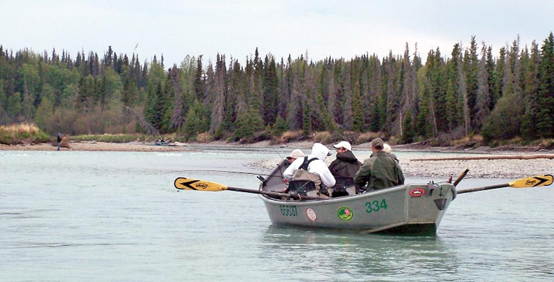 Run to the kasilof anglers move south after kenai early for Kenai river fishing