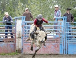 With onlookers behind him, Bill Ashwell surges out of the chute in the senior bull-riding event.