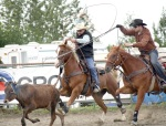 Garret Willis (right) aims his lasso at the head of the fleeing steer, while Steve Cook prepares to capture the animal's back feet with a second lasso in the Team Roping event.