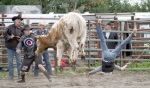 As rodeo officials look on, junior bull rider Johanna Drew, and her bull, go airborne simultaneously. Neither animal nor rider were hurt.