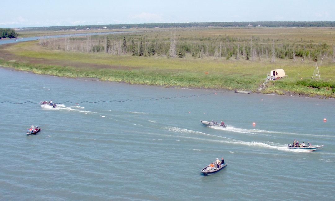 Ak fish counts for Alaska fish counts