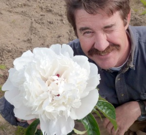 Photo courtesy of Richard Repper. Richard Repper, of Echo Lake Peonies, in Soldotna, shows off an Alaska-grown peony.