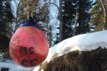 """Spring Buoy"" was taken by SoHi student Hailey Ames."