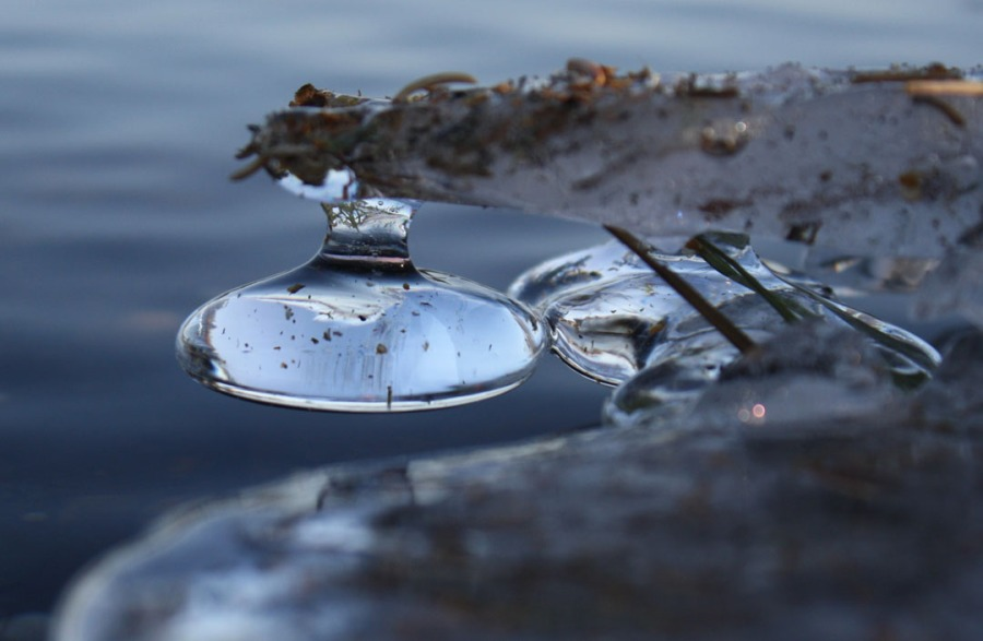 "Second place: ""Drop"" was taken at Parsons Lake in North Kenai, by Judi Price, of North Kenai. Judges' comments: Instantly startling in the crispness of the central focus contrasting with the soft, surrounding area. Cropping would improve the overall image, but the central crispness and refraction of light serves the photo well. Great tonal range. The almost perfectly symmetrical freezing of the water creates a lens effect, concentrating darks and lights, which wouldn't work as well without the crispness and surrounding softness of focus."