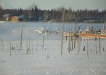 """Spring Boats"" was taken on Bridge Access Road on Jan 29, by Larry Lawrence, of Soldotna."