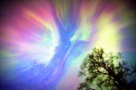 "Honorable Mention:  ""Aurora Borealis,"" Sybille Castro, Nikiski. ""It was a devilishly cold, cold night, and the overhead electrical laser show was blasting away at my house. I waited eight years to see this, and I would have not believed it had I not seen it with my own eyes! I am again in love with Alaska, and after such a long, cold, snowy winter, this aurora was a just reward. Wow, what a present from the heavens!"""