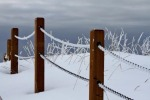 """Chain Link Posts"" was taken on the Kenai Beach March 15 by Jessica Moore, of Kenai."