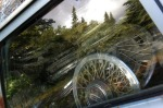 """Silent Spokes,"" by Caz VanDevere, of Kasilof, taken Aug. 20. Reflection of trees on the windshield of a car in a junkyard."