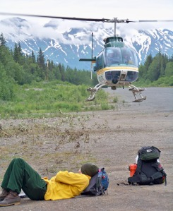 A tired bear census crew member rests in front of a helicopter used to shuttle crews from lure station to lure station.