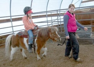 Photos by Jenny Neyman, Redoubt Reporter. Mercedes Tapley, 8, of Kenai, goes for a ride on miniature horse, Cowboy, led by  Gracie Carroll, 13, of Sterling, at C&C Alaskan Horse Adventures' greenhouse-turned indoor horse arena during a kids' horse camp on Jan. 21. Connie Green modified her greenhouse to be able to offer lessons even during the winter.