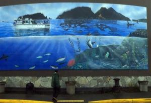 mural sealife