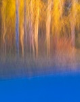 An autumn reflection on Birch Street in Soldotna, with camera shake blurring the image.
