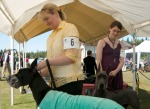 Patty Wolf and Nicole Baston prepare their Great Danes (Kalani and Mouse, respectively) for the dog show.