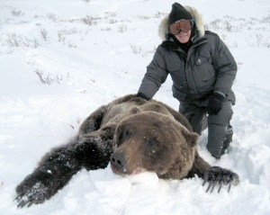 Photo courtesy of Sondra and Clifford Hugg. Clifford Hugg bagged this brown bear on Shishmaref this spring, but lost the hide during his trip home to Soldotna.