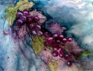 "Third place — ""Grapes"" by Brenda Zubeck"