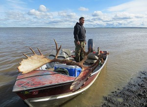 Photo by Clark Fair. Thomas, a Dillingham resident, stands in the boat that he and his father, Pete, used to navigate more than 30 miles up the Nushagak River to hunt moose. They traveled up on the night of Sept. 10, shot this over 60-inch bull on Sept. 11, and made it out and home for dinner.