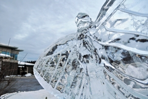 Photos by Joseph Robertia, Redoubt Reporter. An ice sculpture of a butterfly, carved by Ben Firth, of Anchor Point, in front of the Peninsula Community Health Center in Soldotna has held up well despite the rain and temperatures in the 40s late last week. Artists and organizers are working hard to create and preserve their sculptures.