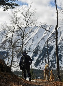 Photo by Joseph Robertia, Redoubt Reporter. A hiker and dogs enjoy a clear day in the Cooper Landing area last winter. From November through March, hikers, skiers and others recreating with their pets should be aware of trapping season.