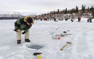 Ice fishing is a popular means of filling the freezer in the winter in Dillingham, as Yvonne Leutwyler joins the crowd on Aleknagik Lake.