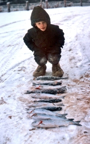 Photos courtesy of Clark Fair, Clark Fair with a haul of trout caught on an ice-fishing trip with his dad in 1964.