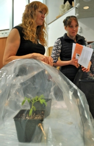 Photos by Joseph Robertia, Redoubt Reporter. Liz Lynch, of North Kenai, and Alison Cramer, of Kenai, discuss utilizing high and low tunnels — seen with a tomato growing under it — during a Get Ready for Spring event held by the Central Peninsula Garden Club on Saturday in Kenai.