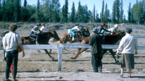 Photo courtesy of Kenai Peninsula College Photo Archive. Spectators watch horse racing during an early Soldotna Progress Days festival.