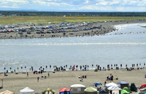 Photo by Joseph Robertia, Redoubt Reporter. The crowds at the Kenai River dip-net fishery thinned this weekend from the peak of fishing July 19, but hundreds still packed the beach in hope of packing their coolers with sockeye salmon.