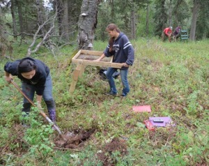 Photo courtesy of David Guilfoyle. Kenaitze members Raven Willoya-Williams and Julianne Wilson dig a shovel test and screen soil at the armory site this summer. The teens participated at the site as a work-study extension of the Kenaitze's Yaghanen Youth Program's summer Susten archaeology camp.