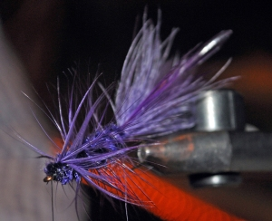 A purple wooly bugger.