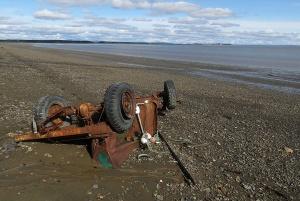 cf junker cars tidal casulty 5