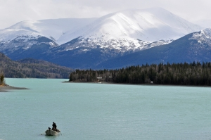 Photo by Joseph Robertia, Redoubt Reporter. Several anglers drift the upper Kenai River on Friday in the hope of catching rainbow trout. The mild winter has meant less ice shelves along the riverbanks, making it easier to launch boats and fish along the shore.