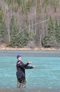 Photo by Joseph Robertia, Redoubt Reporter. Reine Bailey, of Fairbanks, fly fishes just below Kenai Lake on Friday. He said he made the trip south hoping to land a 30-inch or larger rainbow, as he heard several anglers have done this spring.