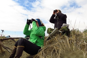 "Photos by Clark Fair. Yvonne Leutwyler and Nathan Coutsoubos watch seabirds on a University of Alaska ""Birds of Alaska"" trip to Cape Constantine near Dillingham recently."