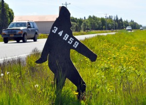 Photo by Joseph Robertia, Redoubt Reporter. A newly erected, man-size Bigfoot cutout along Kalifornsky Beach Road between Kenai and Kasilof serves as a unique driveway marker and address sign for the Luecker-Borce family.