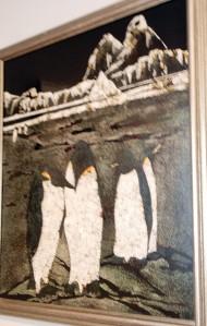 VanDevee penguines