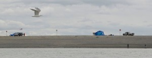 A few early birds set up their camps on the Kenai south beach Thursday in preparation for the Friday dip-net fishery opening.