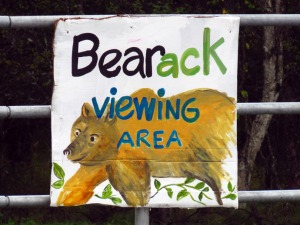 "Photo courtesy of Yvonne Leutwyler. The ""Bearack Viewing Area"" sign along the presidential motorcade route."