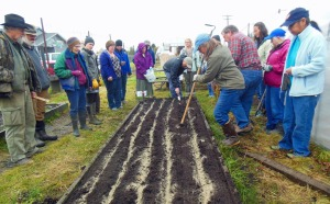Photo courtesy of Cathy Haas. Lori Jenkins, of Homer, leads a garlic-planting workshop at the Kenai Peninsula Food Bank on Saturday. The workshop was presented by the Central Peninsula Garden Club to help locals with what many find to be a tricky crop to cultivate.