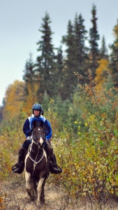 Susan Dent, of Wasilla, rides to a first-place win Saturday, finishing the 30-mile Midnight Sun Challenge endurance ride in Nikiski in less than five hours.