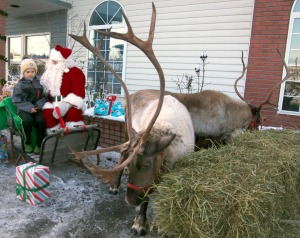 Sawyer Vann keeps his eyes on Comet and Crash the reindeer while visiting with Santa at First Alaska Insurance in Soldotna on Saturday. Visitors made donations for pictures with Santa and the reindeer, which will be contributed to the Kenai Peninsula Borough School District Students in Transition program.