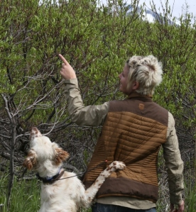 Photo courtesy of Christine Cunningham. Communication is key in training bird dogs — once you learn to speak their particular language.